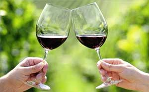 Winery Tours at Miracle Mile Limousine Service and Sight-Seeing Tours of Nanaimo, BC